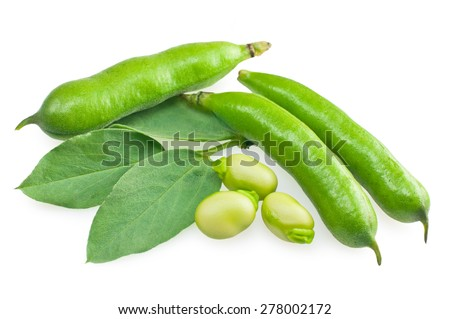 Fresh beans with leaves isolated on white - stock photo