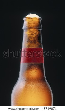 Fresh beer with a blank label - stock photo