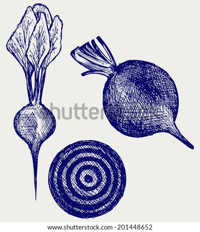 Fresh beetroot with leaves. Doodle style. Raster version - stock photo