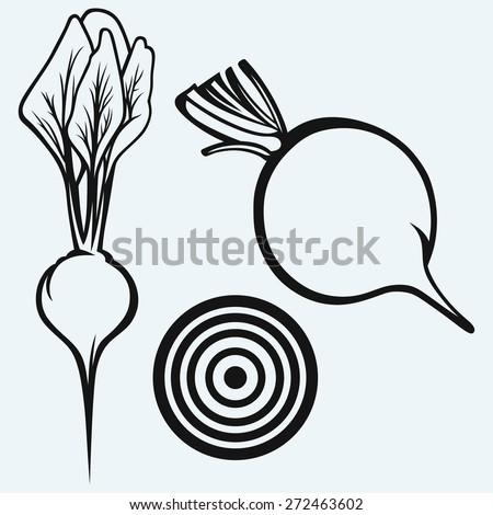 Fresh beetroot with leaves isolated on blue background. Raster version - stock photo