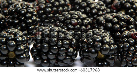 Fresh Blackberry isolated on white
