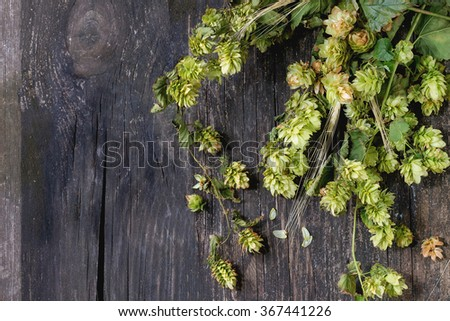 Fresh branches and cones of green hop and ears of barley over old wooden background. Beer concept. With copy space at left. Top view. - stock photo