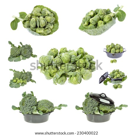 Fresh broccoli and brussels sprouts in closeup isolated on white background  - stock photo