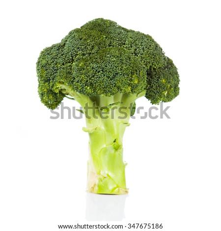 Fresh broccoli on white. - stock photo
