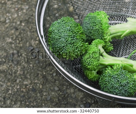 Fresh broccoli stalks in strainer with copy space at left - stock photo