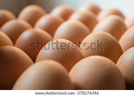 Fresh brown eggs selective focus - stock photo