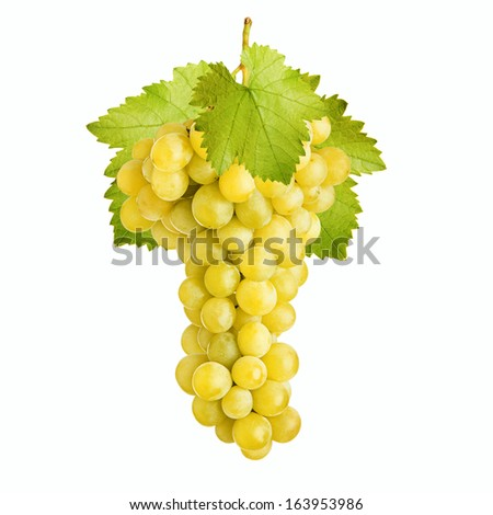 Fresh bunch of grapes of white wine on a white background - stock photo