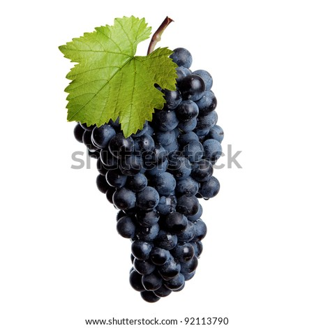 Fresh bunch of red wine on a white background - stock photo