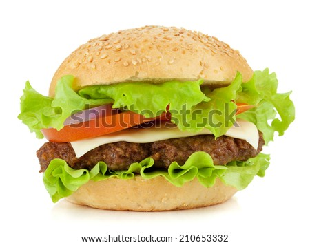Fresh burger with beef, cheese, onion and tomatoes. Isolated on white background - stock photo