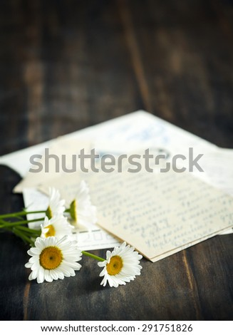 Fresh camomile and old letters