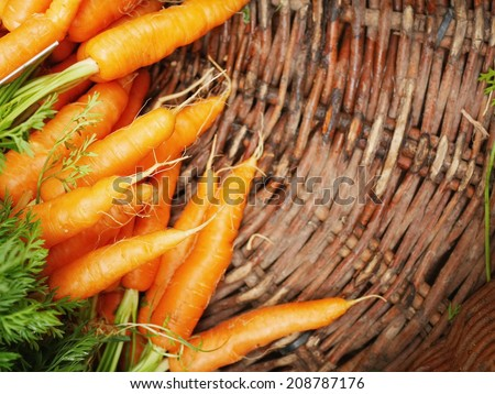 Fresh carrots at the local market. - stock photo