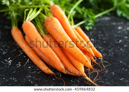 Fresh carrots bunch on stone table