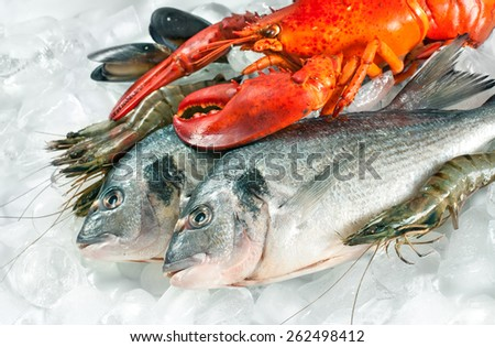 Fresh catch of fish and other seafood on ice - stock photo