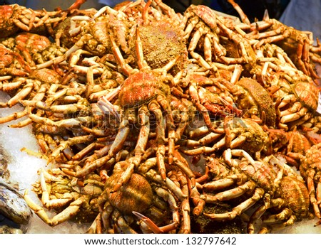 fresh-caught crabs, are photographed in fish market - stock photo