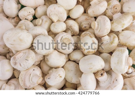 fresh champignons. Champignon mushrooms  background - stock photo