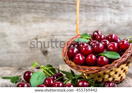Fresh cherries in the basket, orchard produce, ripe fruits from farmer market