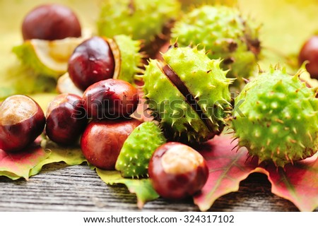 Fresh chestnuts with maple leaves on wooden background - stock photo