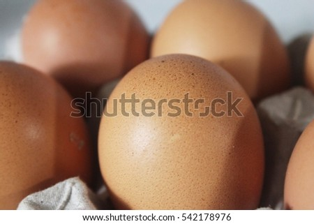 Fresh chicken egg in a pack