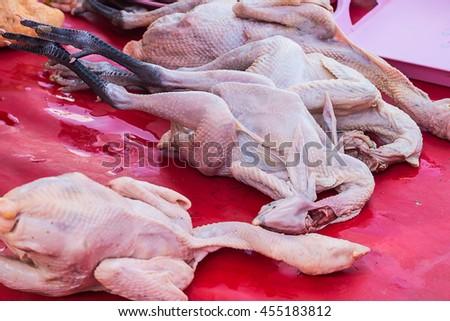 fresh chicken in market - stock photo