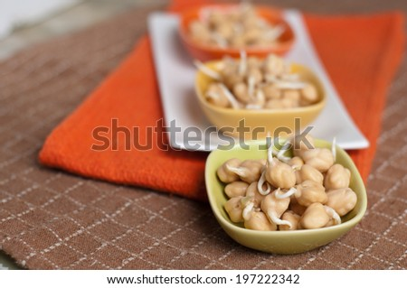fresh chickpea sprouts ready to be cocked - stock photo
