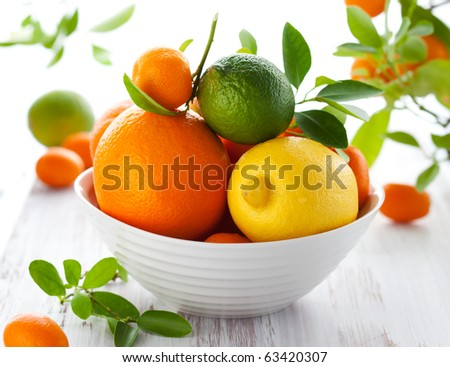 fresh citrus fruits - stock photo