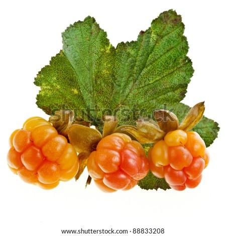 fresh cloudberry ( Rubus chamaemorus) close up  isolated on white - stock photo
