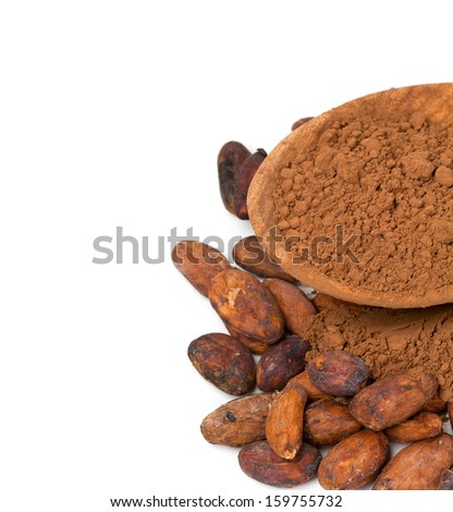 fresh cocoa isolated on white