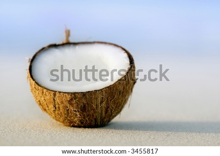 Fresh coconut laying on the coral sandy beach beside ocean edge - stock photo