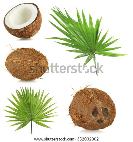 Fresh coconuts with palm leaves, isolated  on white - stock photo