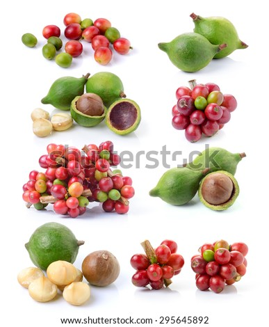 fresh coffee beans and fresh macadamia nut on white background - stock photo