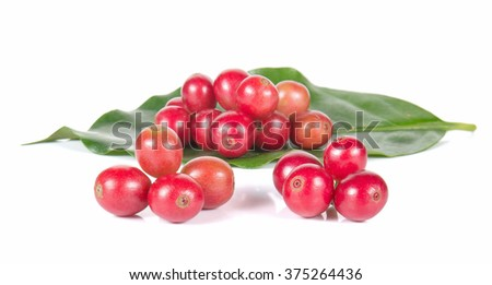 Fresh coffee beans,Fresh red beans isolated on white background.