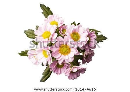 Fresh colorful flowers isolated on white background - stock photo
