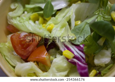 Fresh colorful mixed leaves salad with cherry tomatoes and corn in a bowl. - stock photo