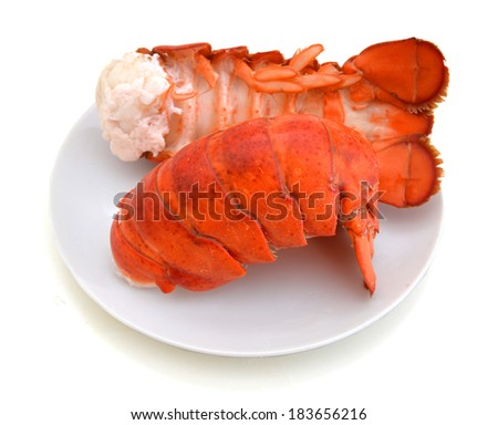 Fresh cooked lobster tails on a white plate  - stock photo