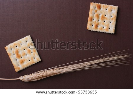 Fresh cookies strewed by salt on a brown background with a dry cone.