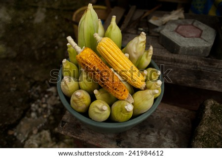 Fresh corn cob. Grew up on a non GMO field in Indonesia. Presented in a ceramic bowl. Nobody, macro perspective. Agriculture. Non modified food. - stock photo