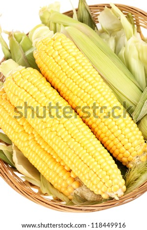 Fresh corn cobs in basket close-up - stock photo