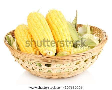 Fresh corn cobs in basket isolated on white - stock photo