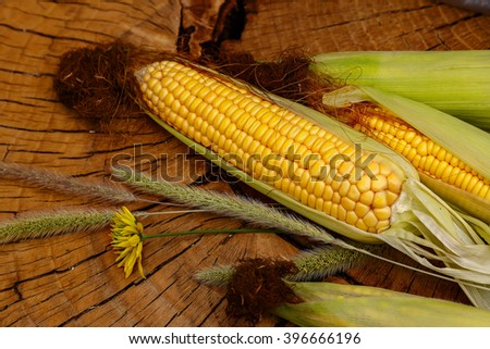 Fresh corn on cobs on wicker mat on wooden table, closeup