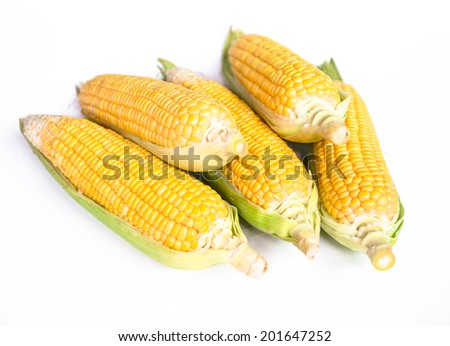 Fresh corns with leaves isolated on white background