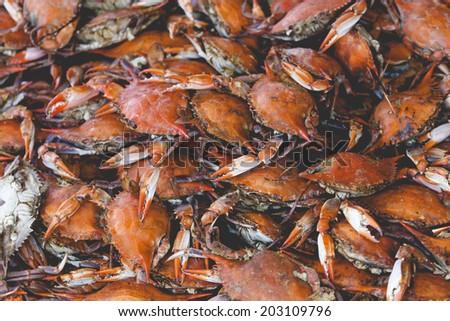 Fresh crab at American fish market  - stock photo