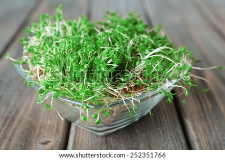 Fresh cress salad in glass bowl and wooden planks background - stock photo