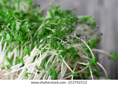 Fresh cress salad on napkin and blurred wooden planks background - stock photo
