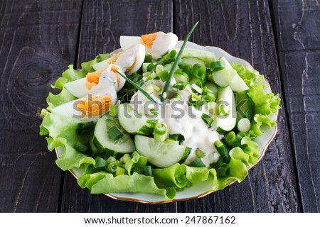 Fresh cucumber slices with sour cream, boiled egg and green onion on a plate  - stock photo