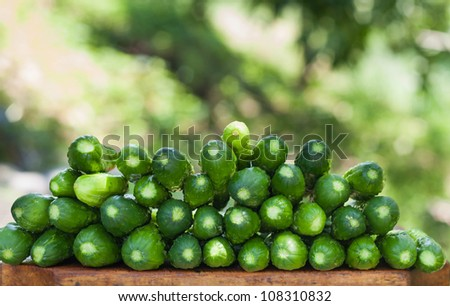 Fresh cucumbers on a wooden board - stock photo