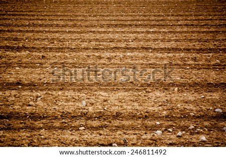 fresh cultivated field close up background texture - stock photo