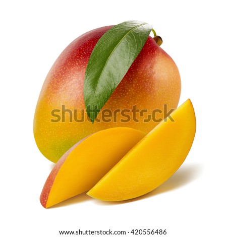 Fresh cut mango leaf long slices isolated on white background as package design element