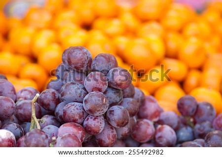Fresh dark red grapes at market place. - stock photo