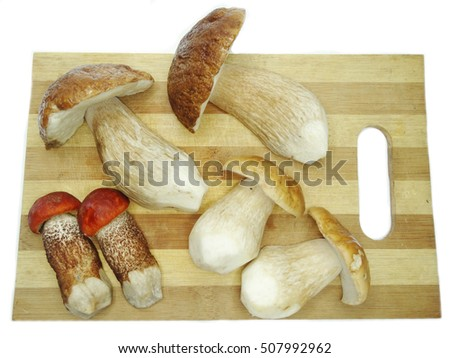 fresh edible forest mushrooms on cutting board