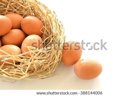 fresh eggs - stock photo